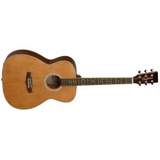 Tanglewood Evolution TFA